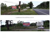 ที่ดินเปล่าแปลงใหญ่หลุดจำนอง ธ.ธนาคารธนชาต คึกคัก ตะกั่วป่า พังงา
